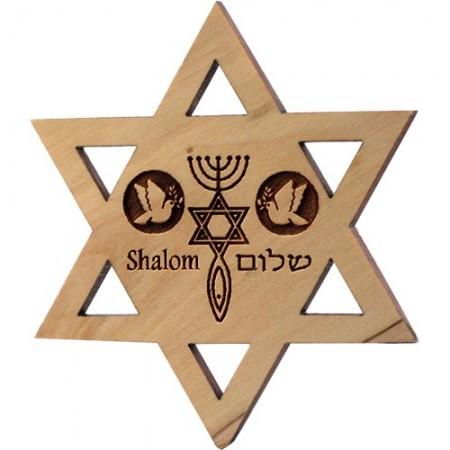 Jewish Star 3-Symbols Peace Magnet
