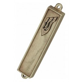 Bronze Cast Mazuzah Case