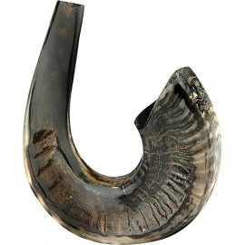 Half Polished Black Shofar