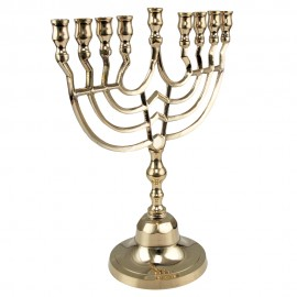 Shiny Brass Hanukkah Menorah