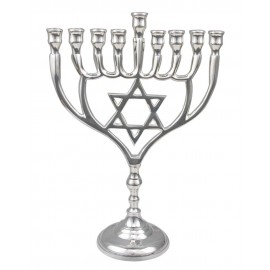 Stunning Silver Colored Hanukkah Menorah