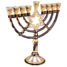 "Enamel and Pewter ""Magen David"" Hanukkah Menorah"